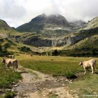 Valle de Aísa, el reino del karst