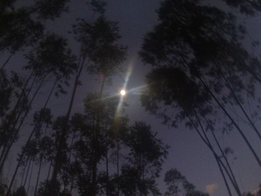 imagem-de lua-na-escuridao-na-serra-do-murca