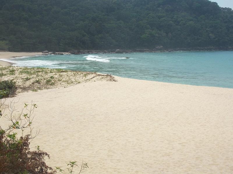 Trindade e suas praias imagem de praia deserta - Trindade. Belezas naturais praias e cachoeiras em harmonia.