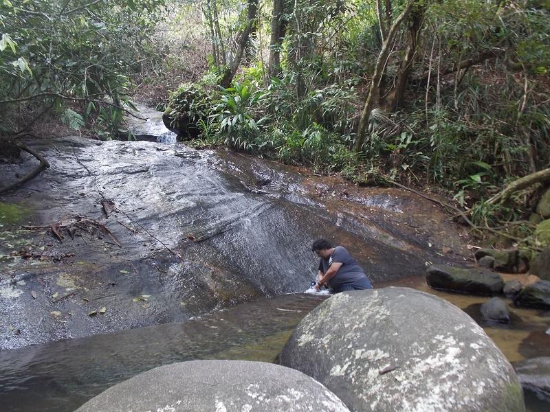 trindade e suas belezas naturais foto de pedra escorrendo agua - Trindade. Belezas naturais praias e cachoeiras em harmonia.