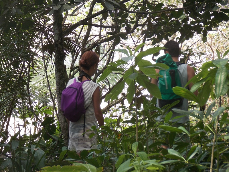 trindade e suas belezas naturais foto de pessoas andando no mato - Trindade. Belezas naturais praias e cachoeiras em harmonia.