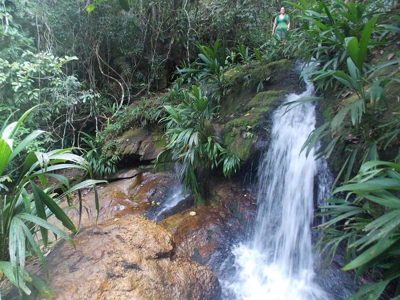 trindade e suas belezas naturais foto de queda de agua - Trindade. Belezas naturais praias e cachoeiras em harmonia.