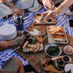 crop friends with assorted appetizers during summer picnic