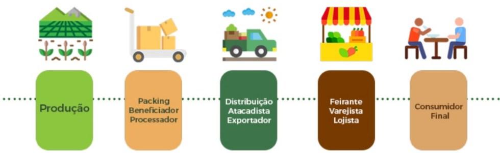Entes da cadeia produtiva de frutas, legumes e verduras