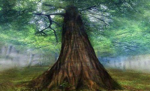 O freixo, árvore mágica nas tradições celta e nórdica