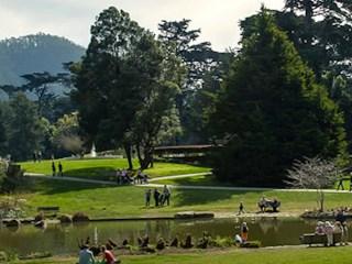 caminhos-do-mundo-san-francisco-botanical-garden