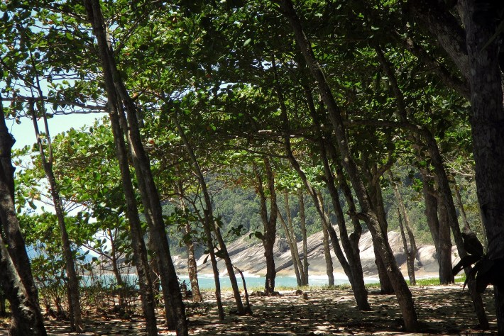 Área de sombra na praia Brava do Frade