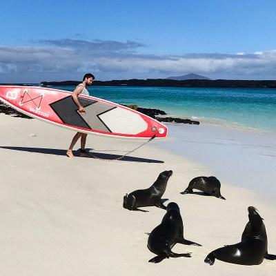 SUP em Galápagos