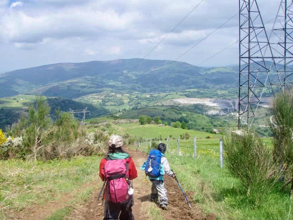 528 カミーノ トリカステーリャ 田舎道 12 鉄塔