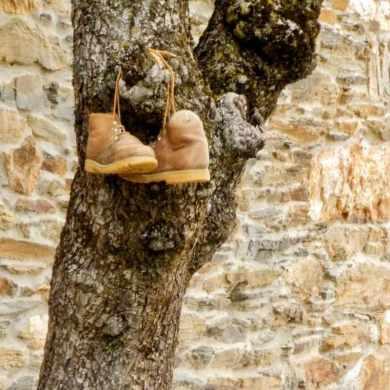 528 カミーノ トリカステーリャ 靴 木