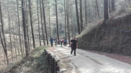 caminodesantiagoroji-etapa-04-022