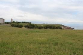 Menhirs landscape