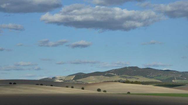 Auf dem Jakobsweg zwischen Jerez-de-la-Frontera und El-Cuervo-de-Sevilla