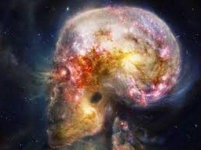 cerebro universo
