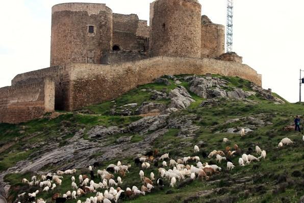 Por tierras de Toledo 44