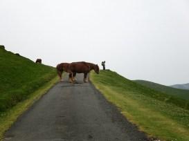 Roadblocks crossing the Pyrenees