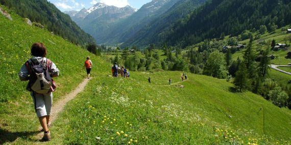 montagna-courmayeur_t