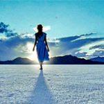 Cammina nel Sole e la casella donazioni