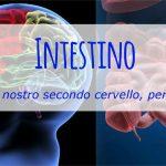 IL SECONDO CERVELLO – LA PANCIA SENTE,AGISCE e  RICORDA PIU' DELLA TESTA