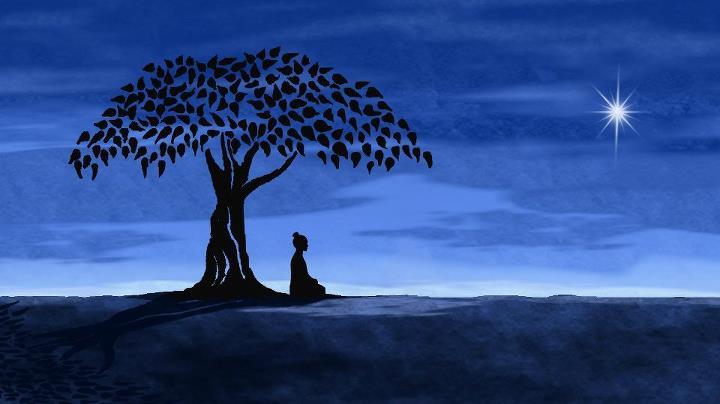 7 Frasi Buddiste Che Vi Cambieranno La Vita Cammina Nel Sole