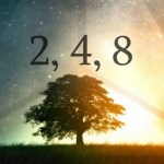 LA SEQUENZA 2-4-8 …IL PASSAGGIO DAL 2 CHE CREDIAMO DI ESSERE ALL'8 CHE SIAMO