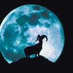LUNA PIENA IN ARIETE -5 OTTOBRE 2017 e SETTIMANA ASTROLOGICA DAL 2 ALL'8 OTTOBRE di Roberta Turci