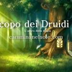 OROSCOPO DEI DRUIDI PER L'ANNO  2018