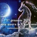 LUNA NUOVA IN CAPRICORNO -17 GENNAIO 2018-  E' TEMPO DI AGIRE ! di Roberta Turci