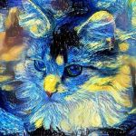 HO ACCOMPAGNATO MAYA OLTRE IL VELO (storie di gatti maestri), di Roberta Turci