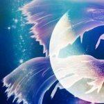 LUNA NUOVA IN PESCI – 6 MARZO 2019 di Intuitive Astrology