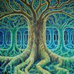COSA SIGNIFICA ESSERE UNA PERSONA SPIRITUALE? di Barbara Ziletti