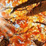 ALLE PORTE DELL'EQUINOZIO DI AUTUNNO 2019 di Cammina nel Sole