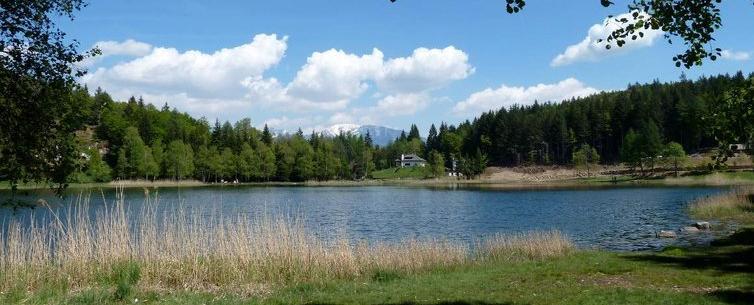 lago s