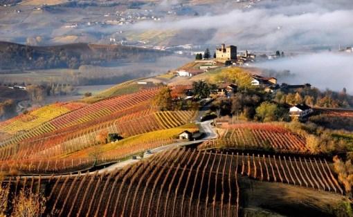 langhe-roero-e-monferrato.jpg
