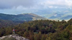 Cammino d'Assisi