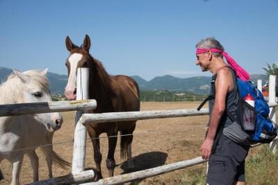 Cammino Terre Mutate Tappa 1 Fabriano Matelica cavalli e camminatori