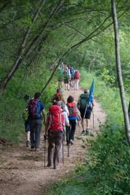 Cammino Terre Mutate Tappa 1 Fabriano Matelica verdi boschi