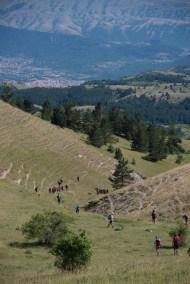 Cammino Terre Mutate Tappa 13 Mascioni - Collebrincioni (94)