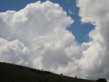 Cammino Terre Mutate Tappa 5 Ussita-Visso-Campi di norcia (58)