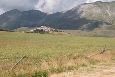 Cammino Terre Mutate Tappa 7 Norcia - Castelluccio di norcia (21)