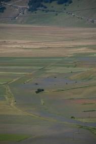 Cammino Terre Mutate Tappa 8 Castelluccio di Norcia - Arquata del Tronto (18)