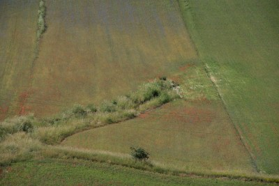 Cammino Terre Mutate Tappa 8 Castelluccio di Norcia - Arquata del Tronto (20)