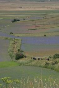 Cammino Terre Mutate Tappa 8 Castelluccio di Norcia - Arquata del Tronto (28)