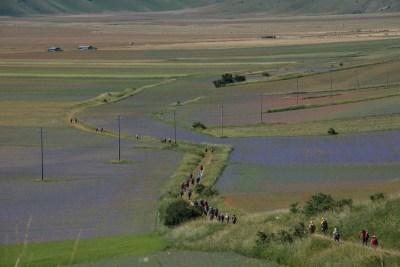 Cammino Terre Mutate Tappa 8 Castelluccio di Norcia - Arquata del Tronto (31)
