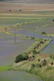 Cammino Terre Mutate Tappa 8 Castelluccio di Norcia - Arquata del Tronto (34)