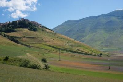 Cammino Terre Mutate Tappa 8 Castelluccio di Norcia - Arquata del Tronto (36)