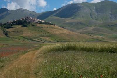 Cammino Terre Mutate Tappa 8 Castelluccio di Norcia - Arquata del Tronto (52)