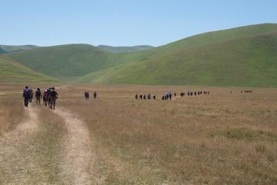 Cammino Terre Mutate Tappa 8 Castelluccio di Norcia - Arquata del Tronto (80)