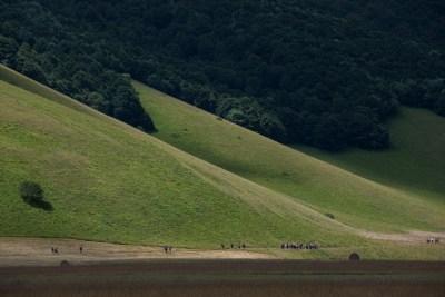 Cammino Terre Mutate Tappa 8 Castelluccio di Norcia - Arquata del Tronto (84)