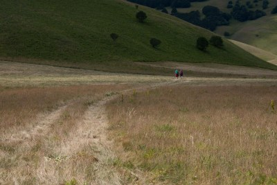 Cammino Terre Mutate Tappa 8 Castelluccio di Norcia - Arquata del Tronto (86)